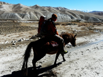 Riding a horse in mustang