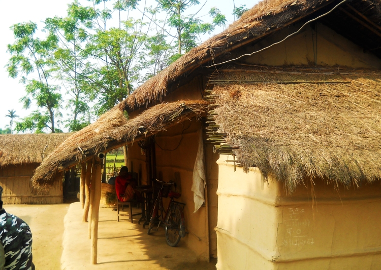 Ethnic tharu hut chitwan