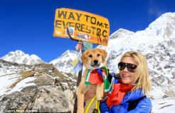 Rupee on its way to everest base camp