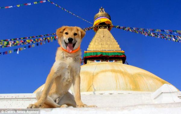 rupee posing at boudhanath stupa