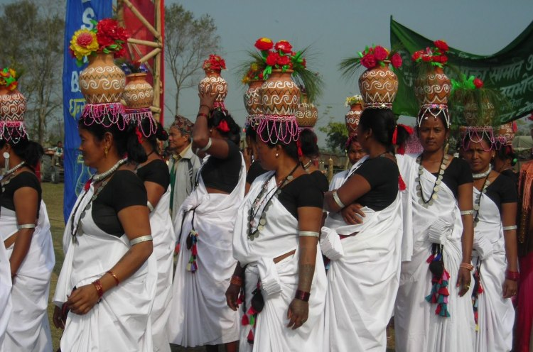 Tharu women participating in local festival