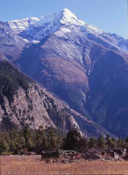 Mt Pisang Peak 6091m from Narodhara